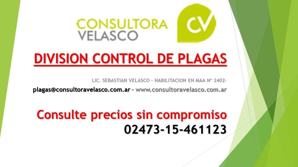 IMAGEN WEB CV DIVISION CONTROL DE PLAGAS
